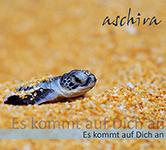 cover_Ekada_small